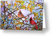 Illinois Cardinals  Greeting Card