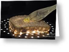 Illuminated Bread Greeting Card