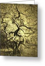 Illusion Tree Greeting Card