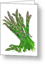 Illustration Of Asparagus Greeting Card