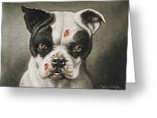 I'm A Bad Dog What Kind Of A Dog Are You Circa 1895 Greeting Card by Aged Pixel