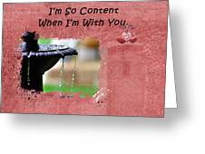 I'm So Content Greeting Card