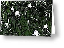 Image 10 Greeting Card