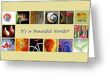 Image Mosaic - Promotional Collage Greeting Card by Ben and Raisa Gertsberg