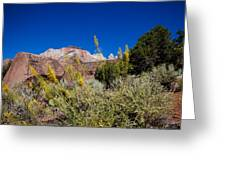 Image Of Zion 01 Greeting Card