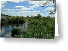 Images Of The Pantanal Greeting Card