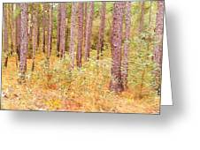 Imaginary Forest Greeting Card