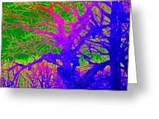Imaginary Forest Number Two Greeting Card