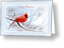 Img 2559-25 Greeting Card
