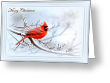 Img 2559-27 Greeting Card