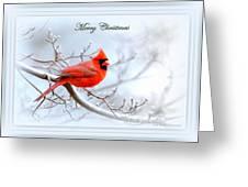 Img 2559-30 Greeting Card