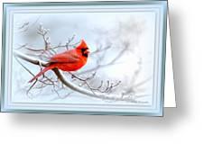 Img 2559-41 Greeting Card