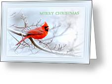 Img 2559-44 Greeting Card
