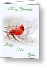 Img 2559-6 Greeting Card