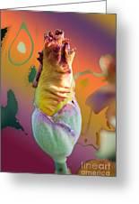 Img 27 Greeting Card