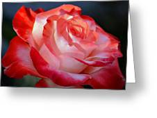 Imperfect Rose Greeting Card