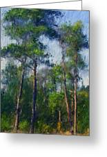 Impression Trees Greeting Card