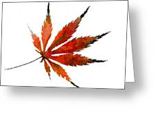 Impressionist Japanese Maple Leaf Greeting Card