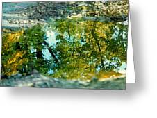 Impressionist Reflections Greeting Card