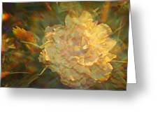 Impressionistic Rose Greeting Card
