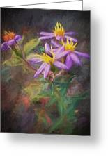 Impressions Of An Aster Greeting Card