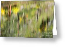 Impressions Of Autumn Greeting Card
