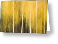Impressions Of Golden Aspen Greeting Card