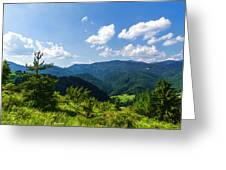 Impressions Of Mountains And Forests And Trees Greeting Card