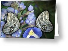 In A Butterfly Garden Two Greeting Card