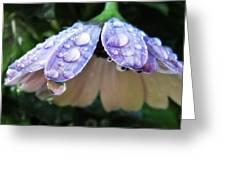 In A Drop Of Rain Greeting Card