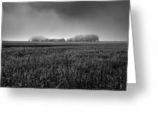 In A Fog Greeting Card
