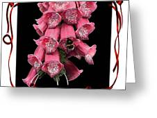 In A Frame Greeting Card