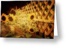 Sunflowers And Lattice Greeting Card