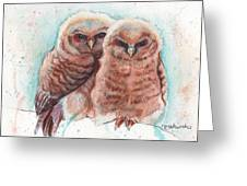 In Cahoots Greeting Card
