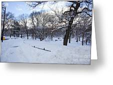 In Central Park Greeting Card