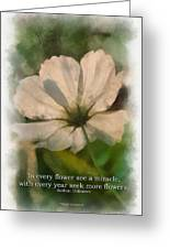 In Every Flower See A Miracle 01 Greeting Card