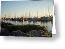 In Harbor Greeting Card by Amy Strong