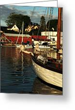 In Harbor Greeting Card by Karol Livote