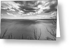 In Motions Greeting Card by Jon Glaser