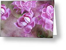 In Pink Greeting Card