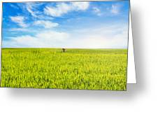 In Search Of Inner Peace Greeting Card