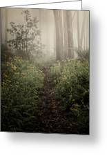 In Silence Greeting Card by Amy Weiss
