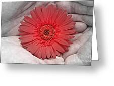 In Strong Hands Greeting Card
