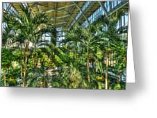In The Conservatory Greeting Card