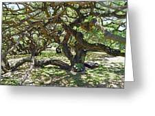 In The Depth Of Enchanting Forest I Greeting Card