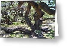 In The Depth Of Enchanting Forest Iv Greeting Card