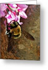 In The Eyes Of Nature Greeting Card