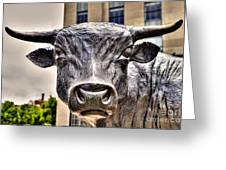 In The Eyes Of The Bull Greeting Card