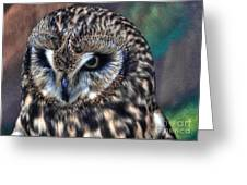 In The Eyes Of The Owl Greeting Card