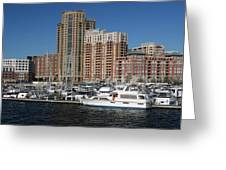 In The Harbor Greeting Card